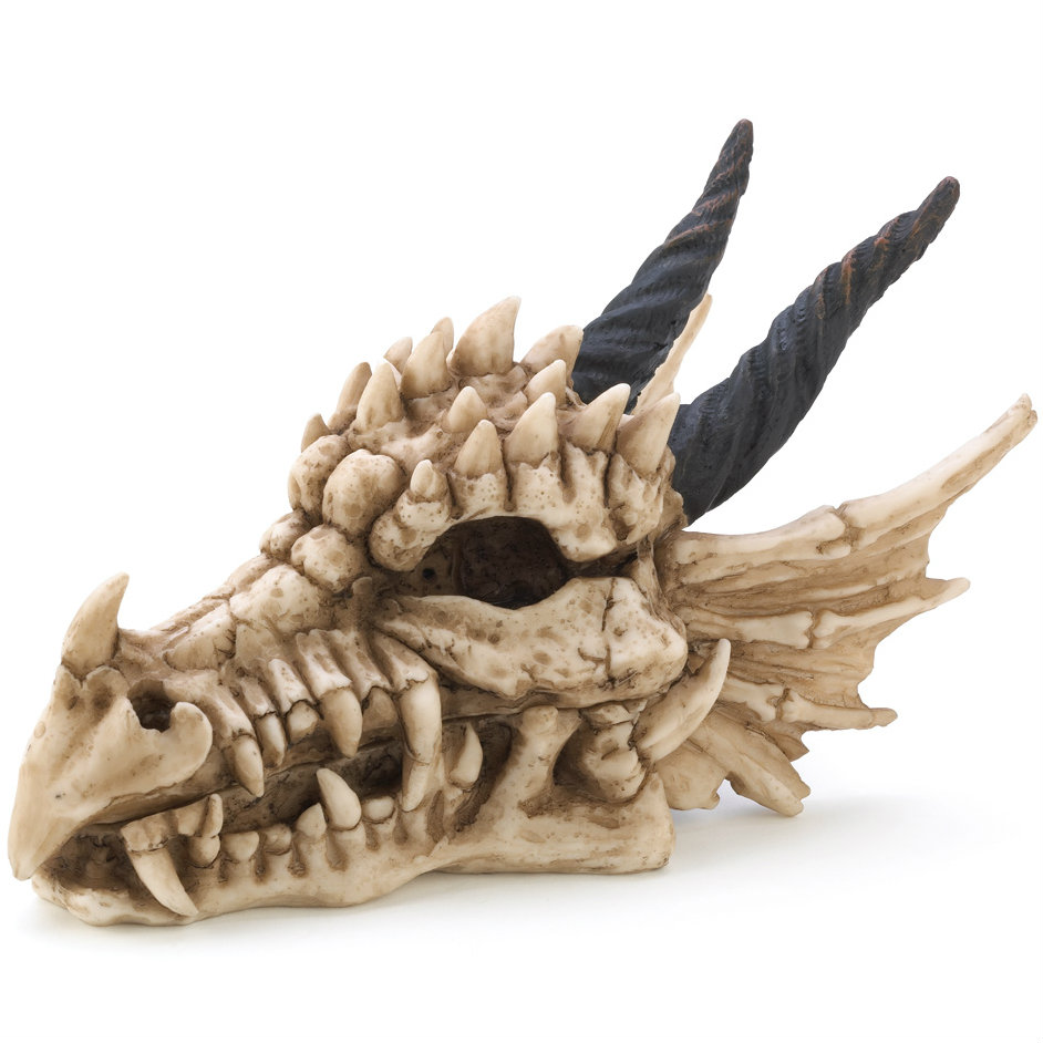 Dragon Skull TRINKET BOX